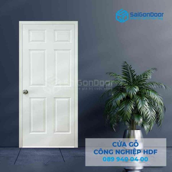 Cua go HDF 6A C1 4.jpg SGD HDF