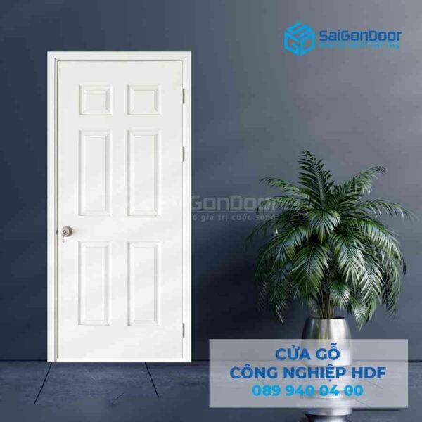 Cua go HDF 6A C1 5.jpg SGD HDF