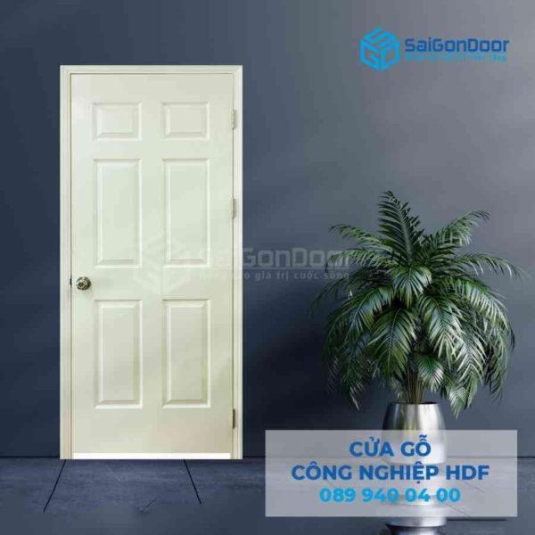 Cua go HDF 6A C1 7.jpg SGD HDF