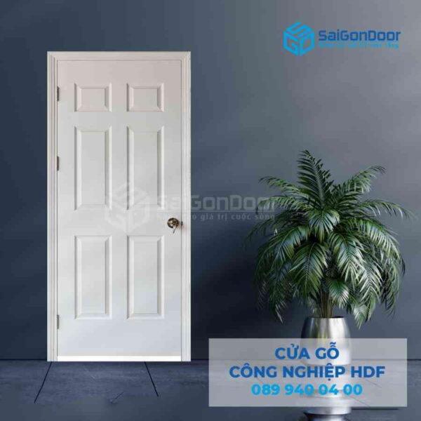 Cua go HDF 6A C1 8.jpg SGD HDF