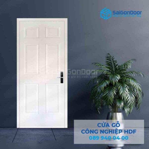 Cua go HDF 6A C1 9.jpg SGD HDF